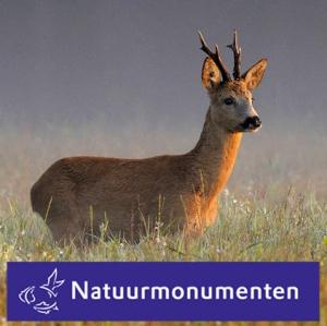 Meehelpen Support for Nature 19-10-2013 (20 personen)